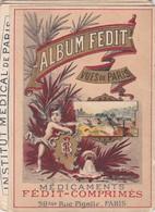 ALBUM FEDIT VUE DE PARIS DOCUMENT TRES RARE CALENDRIER ANNEE 1899 PUBLICITE MEDICAMENTS INSTITUT PARIS HOUSSIN LE MANS - 1800 – 1899