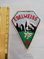 10759     ECUSSON TISSU  EDELWEISS  ATS DE TARBES - Scudetti In Tela