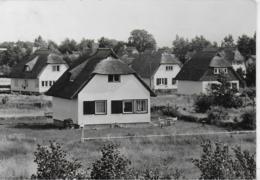 AK 0412  Ostseebad Ahrenshoop - Siedlung Am Hochufer / Ostalgie , DDR Um 1971 - Fischland/Darss