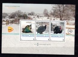 Nederland 2018  Eindejaarsbeurs Barneveld Nr 10: Thema Vogels, Pauw, Parelhoen, Kalkoen, Peacock, Guinea Fowl, Turkey, - Periodo 2013-... (Willem-Alexander)
