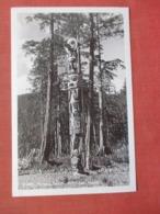 RPPC    Totem Pole Ketchikan  Alaska  Ref  3849 - Indiaans (Noord-Amerikaans)