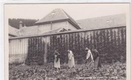 Cerniat, Chartreuse De La Valsainte. Moines Travaillant Au Jardin - FR Fribourg