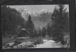 AK 0413  Neuberg An Der Mürz - Karlgraben Um 1905 - Mürzzuschlag