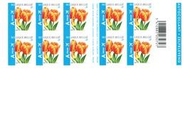 """Postzegelboekje.  Bloemen. Fleurs. Tulipa """"Orange Favourite"""" - Postzegelboekjes 1953-...."""