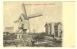 A0944[Postkaart] Montaigu. Le Moulin Et Le Château Michiels [windmolen Scherpenheuvel Zichem Het De Kasteel Hondenspan] - Scherpenheuvel-Zichem
