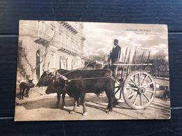 COSTUMI SICILIANI  RITORNO DAL LAVORO  1918  CARRO CON BUOI - Costumi