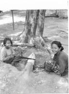 Photo Cambodge Abattages D'arbres Pour Le Bois De Chauffage Photo Vivant Univers - Places