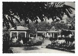 2648 - SARNANO MACERATA CENTRO IDROPINICO MINERALE 1957 - Other Cities