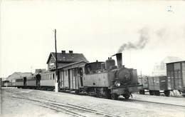 CHEMINS DE FER DE LA SOMME - Gare De Cayeux,locomotive N°3855, Carte Photo Laurent En 1952. - Trains