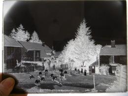 ROUGEUX LE CORNOT PLAQUE DE VERRE PHOTOGRAPHE MERGER A HORTES  24 X 17.5 CM - Diapositiva Su Vetro