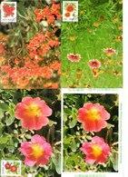 China Taiwan 3 Tarjeta Máxima Nº Michel 2436/38 (Maximum Cards) - Lettres & Documents