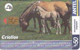 Nº 385 TARJETA DE URUGUAY DE CRIOLLOS  (CABALLO-HORSE) - Uruguay