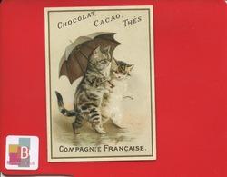Chocolat De La Compagnie Française COMPAGNIE FRANCAISE Jolie Chromo Chat Katze Cat Anthropomorphisme Couple Parapluie - Other