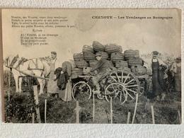 Rare Chenove Vendanges Bourgogne Vignes Vin - Autres Communes