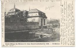 St. Ghislain. Ancien Abbaye Des Moines Et Le Vieux Renard Combattant De 1830. - Saint-Ghislain