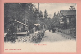 OLD POSTCARD - SWITZERLAND - SCHWEIZ -     KANDERSTEG - HOTEL BLAUSEE-HOHE - BE Berne
