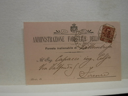 VALLOMBROSA  -- FIRENZE   --- AMMINISTRAZIONE FORESTALE DELLO STATO - Prato