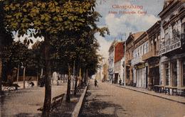 CÂMPULUNG MUSCEL : ALEEA PRINCIPELE CAROL - COFETARIA ... PORT ARTUR / COAFOR / DROGUERIE ... ~ 1915 - '920 (ad662) - Rumänien