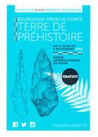 TERRE DE PREHISTOIRE - Historia
