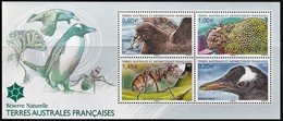 2012 TAAF / FSAT Nature Reserve: White-chinned Petrel, Gentoo Penguin, Anatalanta Fly, Lyallia Minisheet (**/MNH/UMM) - Birds