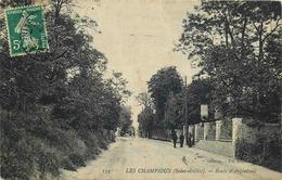 VAL D'OISE  ARGENTEUIL  Les Champioux  Route D'Argenteuil - Argenteuil