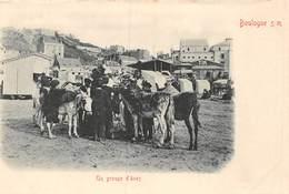 20-1294 : BOULOGNE SUR MER. UN GROUPE D'ANES. ANE. - Burros