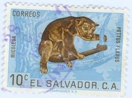 EL SALVADOR, FAUNA, ANIMALI, KINKAJOU, 1963, 10 C., FRANCOBOLLO USATO   Mi:SV 861, Scott:SV 743, Sg:SV 1185 - Benin – Dahomey (1960-...)