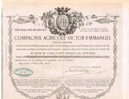 Titre Ancien - Compagnie Agricole Victor-Emmanuël - Titre De 1853 - Déco - Rare - Landbouw