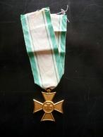 Medaglia Croce Rossa Anzianità XXV Anni Anni '20 Originale - Jetons En Medailles