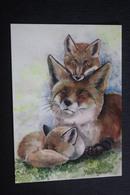 Fuchs (Raubtier), Renard  - Fox - Modern Postcard - By Plovetskaya - Tierwelt & Fauna