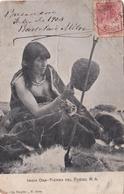 INDIA ONA, TIERRA DEL FUEGO. ARGENTINAPOSTALE AVEC LA SIGNATURE DU PRESIDENT BARTOLOME MITRE. CIRCULEE 1903  -LILHU - Argentine