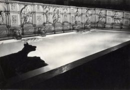 Siena - Cartolina Antica FONTE GAIA, NOTTURNO, Jacopo Della Quercia, Anno 1957 - R24 - Sculture