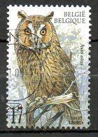 BELGIQUE. N°2807 De 1999  Oblitéré. Chouette Hulotte. - Owls