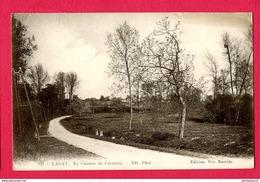 CPA (Réf : X554) 135. LAGNY (77 SEINE-et-MARNE) Le Chemin De Carnetin - Lagny Sur Marne
