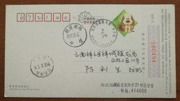 Tundra Swan,China 2007 Hunan Xiangyin Dongtinghu Lake Wetland Birds Illustrated PMK Used On Card - Cigni