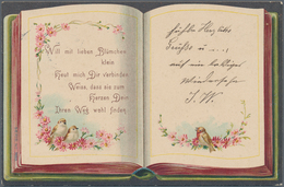 Ansichtskarten: KARTON, Mit über 1000 Historischen Ansichtskarten Ab Ca. 1900 Bis In Die 1970er Jahr - Ansichtskarten