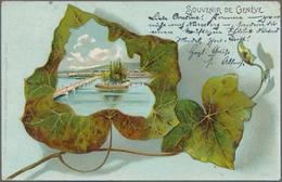 Ansichtskarten: LAGERBESTAND An Gut 450 Historischen Ansichtskarten Aus Den Jahren 1898/1960, Wobei - Ansichtskarten