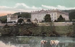 PC Chatsworth  (46812) - Derbyshire