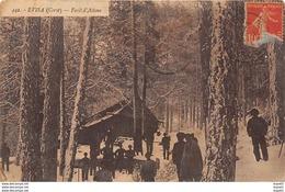 EVISA (Corse) - Forêt D'Aïtone - Très Bon état - Andere Gemeenten