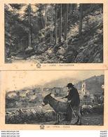 2 Cartes - CORSE - Forêt D'Aïtone - PIANA - A. Tomasi - Très Bon état - France
