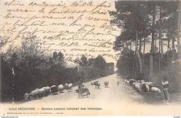 ARCACHON - Berger Landais Gardant Son Troupeau - Très Bon état - Arcachon