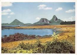 Mauritius Photo Siegfried Sammer  ILE MAURICE - Montagnes De La Rivière Noire   Barry 1960 - Mauritius