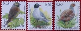 Bird Vogel Oiseau Pajaro Buzin OBC N° 3379-3381 (Mi 3427-3429) 2005 POSTFRIS MNH ** BELGIE BELGIEN / BELGIUM - Belgien