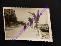 Photo Originale Amateur Snapshot 1970 Sur Le Port De Hyères Palmiers Citroën ID - Personnes Anonymes