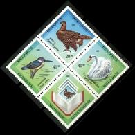 Belarus 1993 Bielorrusia / Birds MNH Aves Vögel Oiseaux Uccelli / Cu15735  40-19 - Pájaros