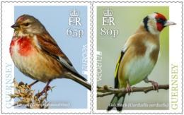 EUROPA CEPT - 2019 - Guernsey - 1.Set - (National Birds) ** MNH - 2019