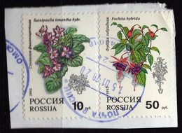 Russia 1993 2 V Used Flowers Flower Fleurs Fleur - Flora