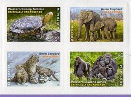 Australia 2016. Fauna.  Elephants. Gorillas. Turtles. Cats Of Prey. Leopard - Roofkatten