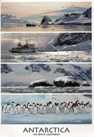 CPM  -  ANTARTICA -  ARGENTINA -  USHUAIA -  Provincia De Tierra Del Fuego - Museo Del Fin Del Mundo - Argentinien