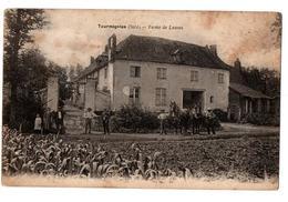 TOURMIGNIES FERME DE LASSUS CHAMP DE MAIS ANIMEE - France